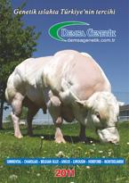 2011 Etçi Katalog