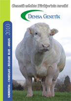 2010 Etçi Boğa Katalog