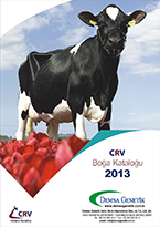 CRV 2013 Boğa Katalog