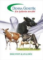 2017 Holstein Katalog